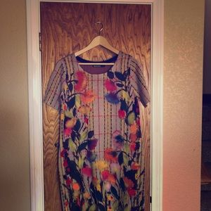 Anthropologie and Troubador sweater dress size M